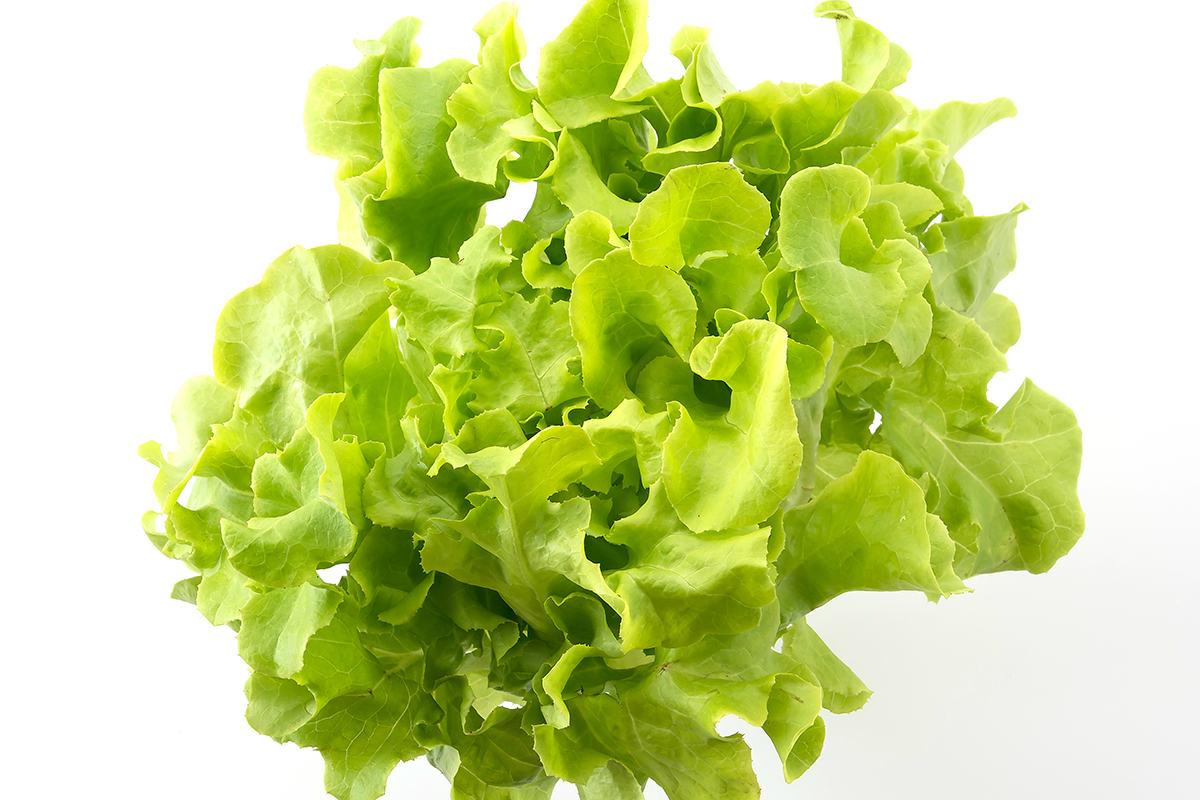 conservar salada