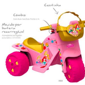 moto princesas Disney