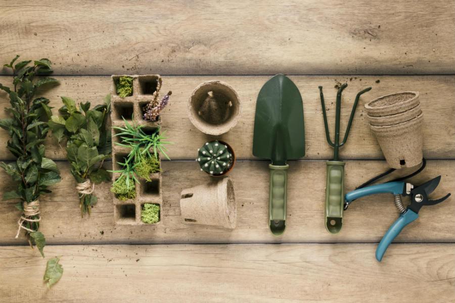 cuidados com horta em apartamento